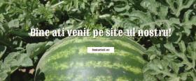 Site prezentare cu profil agricol